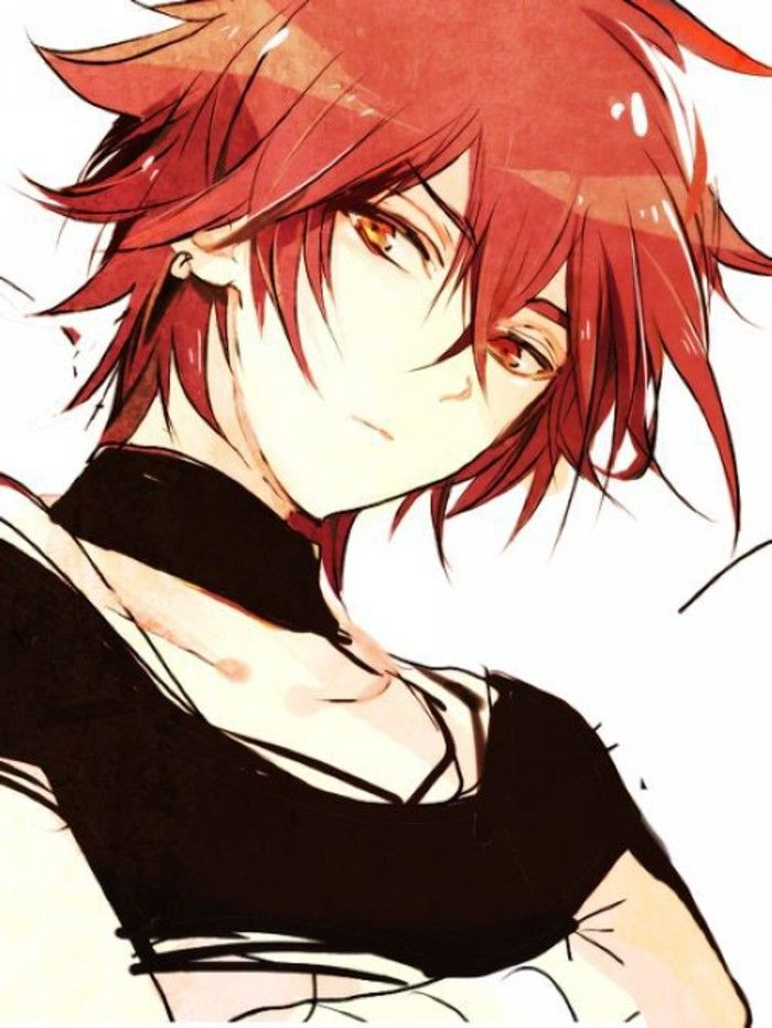 with red blue hair and eyes boy Anime