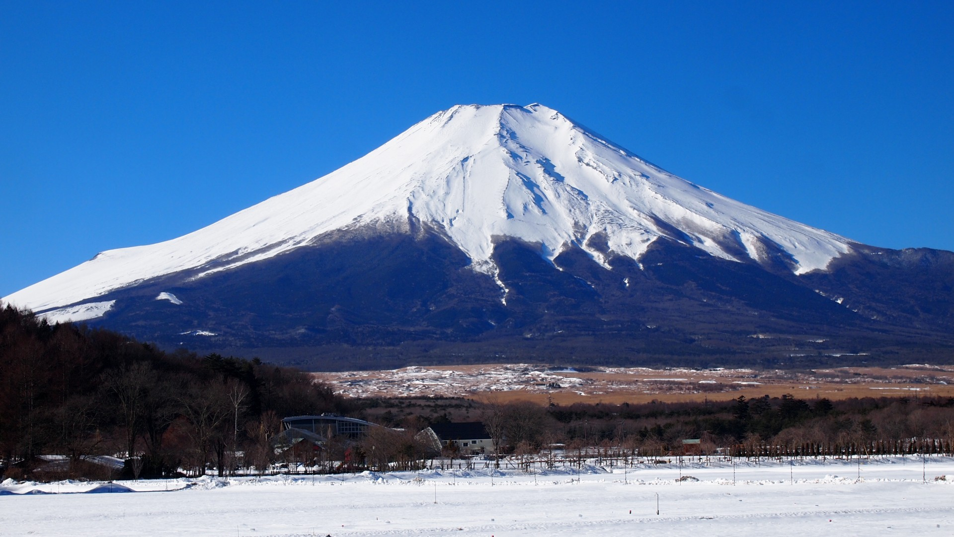 winter do can in japan you What in